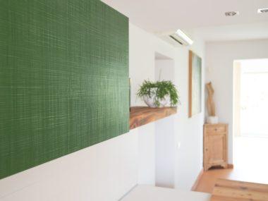 Fronturi Texture-finisaj Cactus-vopsit verde